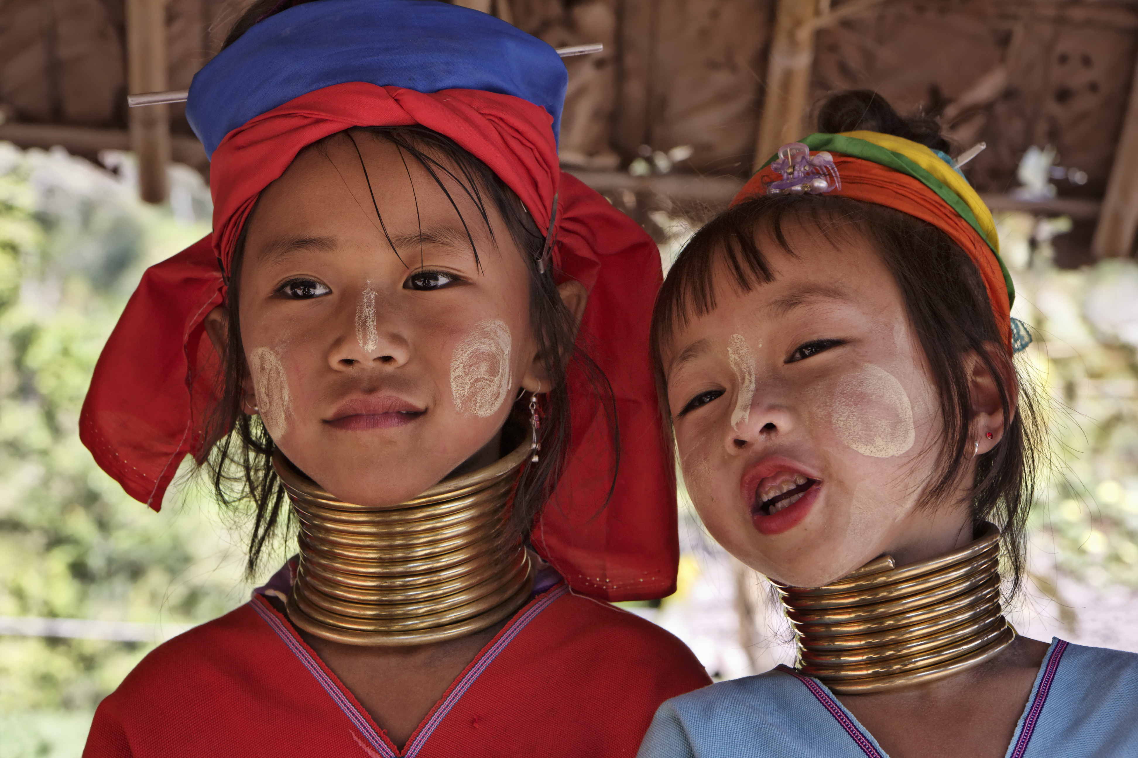 Thailand, Chiang Mai, Karen Long Neck hill tribe village (Kayan Lahwi), Long Neck young girls in traditional costumes. Women put brass rings on their neck when they are 5 or 6 years old and increase the number every year until their necks become longer as a symbol of beauty