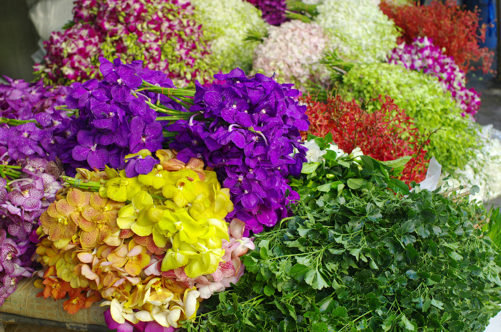 multicolor orchid Bundle in the flower market, bangkok, Thailand