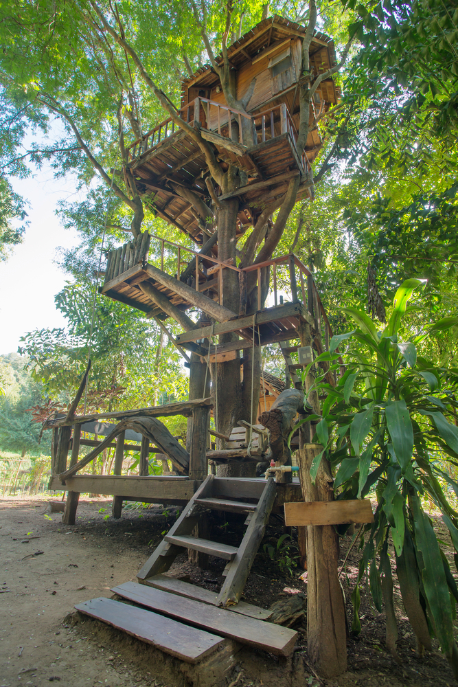 Beautiful tree house in Chiang Mai province, Thailand