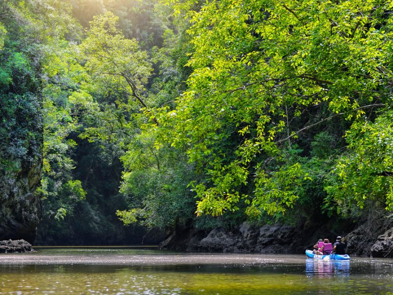 kayaking among the nature
